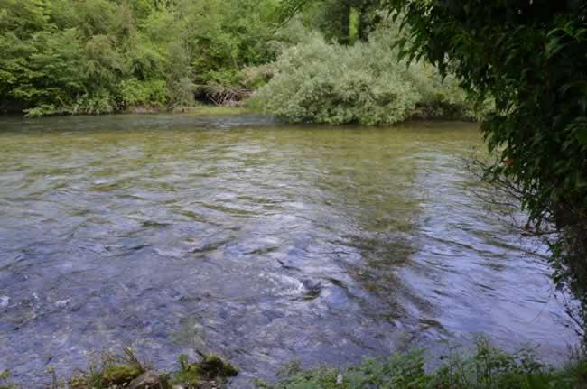 riviere_2016_01